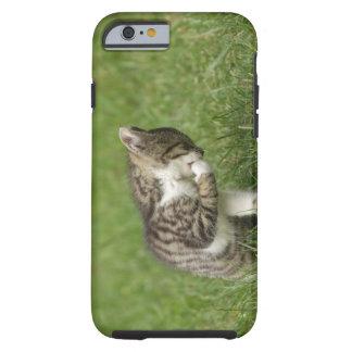Retrato del gato funda de iPhone 6 tough