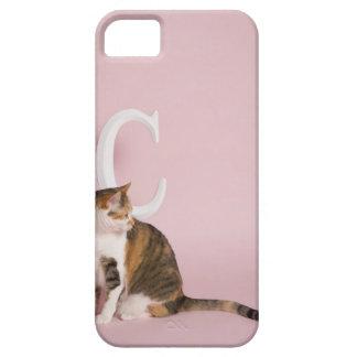 Retrato del gato iPhone 5 fundas