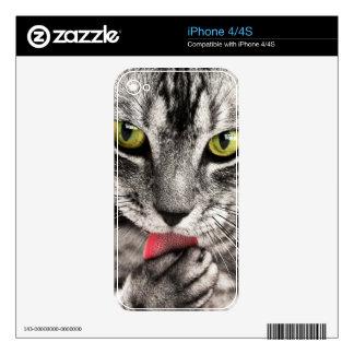 Retrato del gato iPhone 4S calcomanía