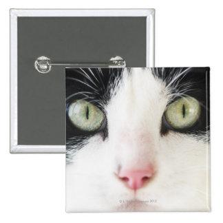 Retrato del gato nacional pin