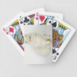 Retrato del gato persa cartas de juego