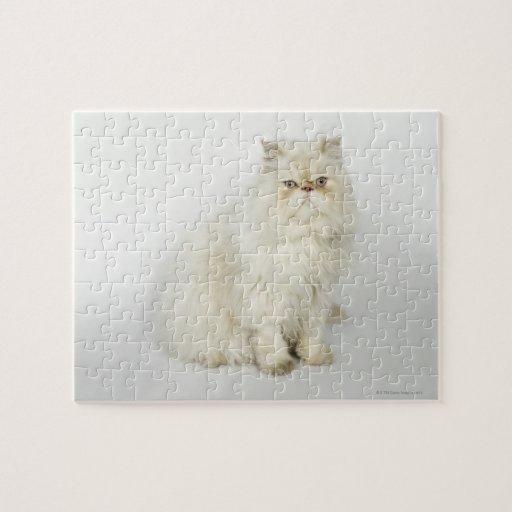 Retrato del gato persa rompecabezas