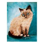Retrato del gato postales