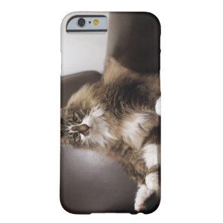 Retrato del gato que se sienta en silla funda para iPhone 6 barely there