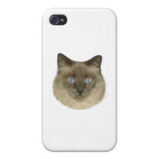 Retrato del gato siamés iPhone 4/4S carcasa
