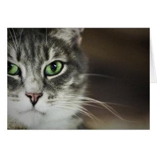 Retrato del gato tarjeta de felicitación