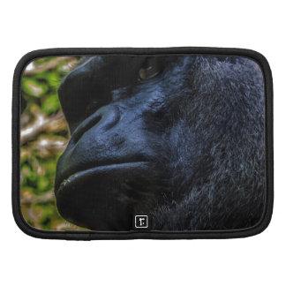 Retrato del gorila organizadores