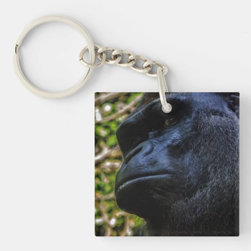 Retrato del gorila llavero