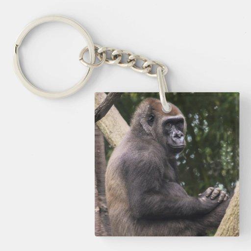 Retrato del gorila llaveros
