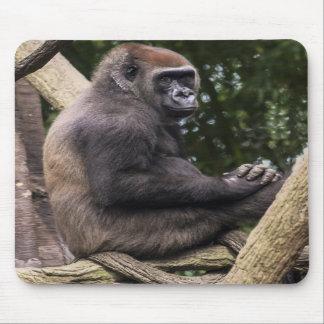 Retrato del gorila tapete de ratones