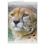 Retrato del guepardo felicitacion