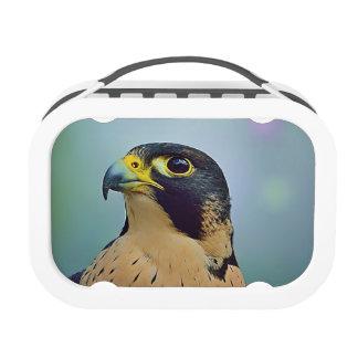 Retrato del halcón de Pelegrine