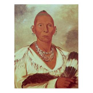 Retrato del halcón negro, jefe indio postal