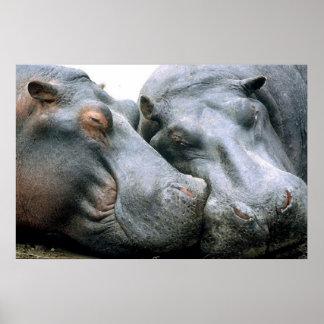 Retrato del Hippopotamus del chisme Póster