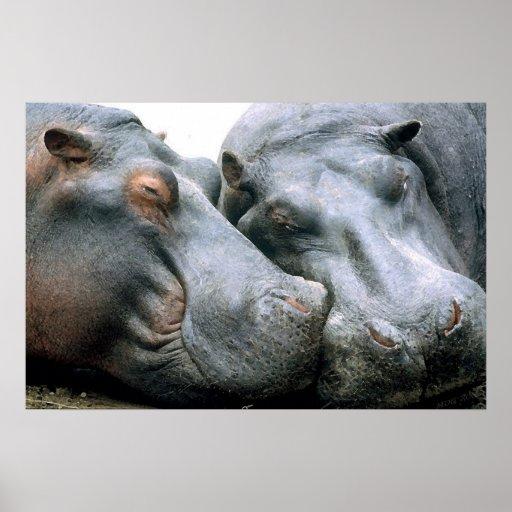 Retrato del Hippopotamus del chisme Poster