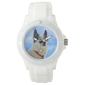 Retrato del husky siberiano relojes