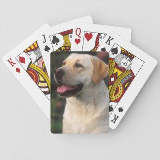 Retrato del labrador retriever, Hilton Baraja De Póquer