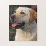 Retrato del labrador retriever, Hilton Puzzle