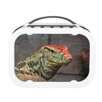 Retrato del lagarto de monitor