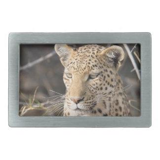 Retrato del leopardo hebilla de cinturón rectangular