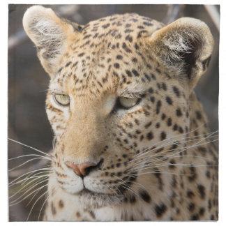 Retrato del leopardo servilletas