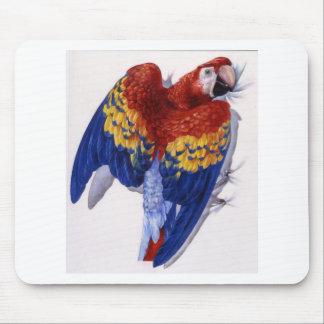 Retrato del Macaw del escarlata Tapete De Ratón
