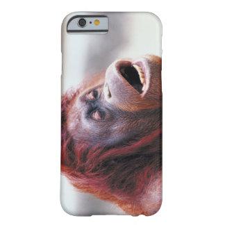 Retrato del orangután funda para iPhone 6 barely there