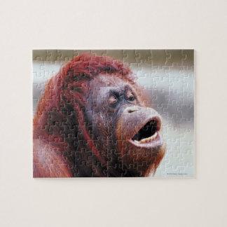 Retrato del orangután puzzle con fotos