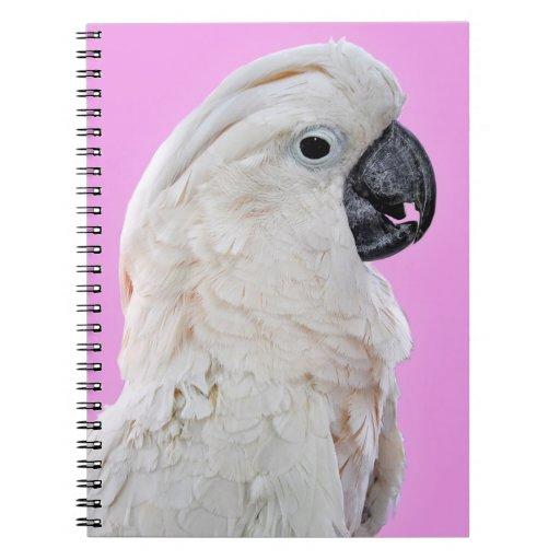 Retrato del pájaro del Cockatoo Libretas