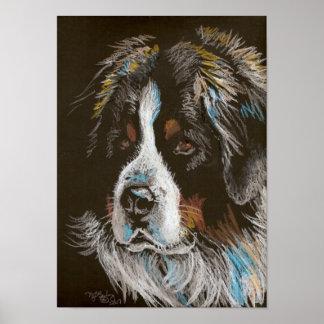 Retrato del pastel del perro de montaña de Bernese Póster