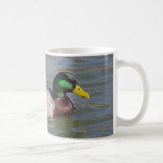 Retrato del pato silvestre taza de café