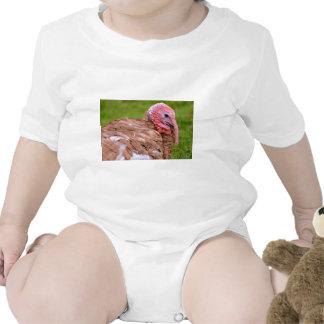 Retrato del pavo traje de bebé