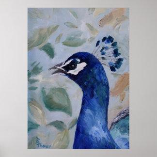 Retrato del pavo real póster