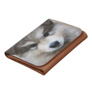 Retrato del perrito