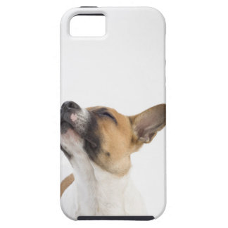 retrato del perrito mestizo iPhone 5 Case-Mate cárcasas