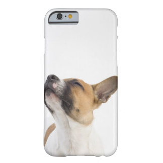 retrato del perrito mestizo funda de iPhone 6 barely there