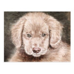 Retrato del perrito postales
