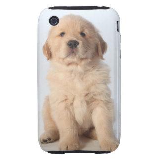 Retrato del perrito viejo de seis semanas del carcasa though para iPhone 3
