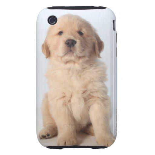 Retrato del perrito viejo de seis semanas del gold iPhone 3 tough funda