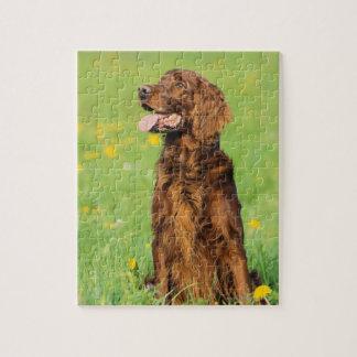 Retrato del perro 2 rompecabezas