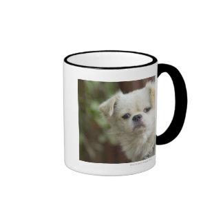 Retrato del perro 2 taza de dos colores