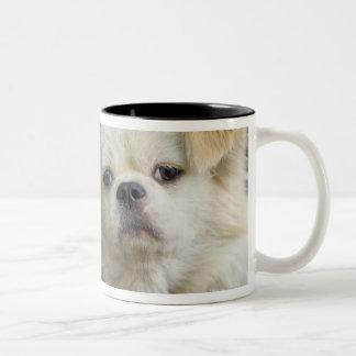 Retrato del perro 2 taza de dos tonos