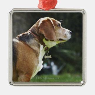 Retrato del perro adorno navideño cuadrado de metal
