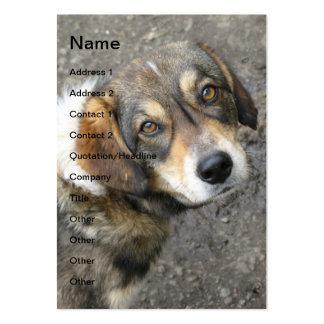 Retrato del perro tarjetas de visita