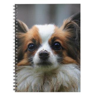 Retrato del perro criado en línea pura de Papillon Libro De Apuntes