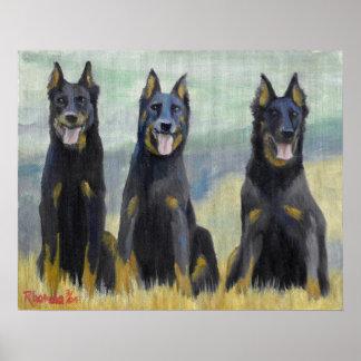 Retrato del perro de Beauceron Impresiones