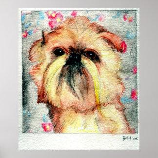 Retrato del perro de Bruselas Griffon Poster