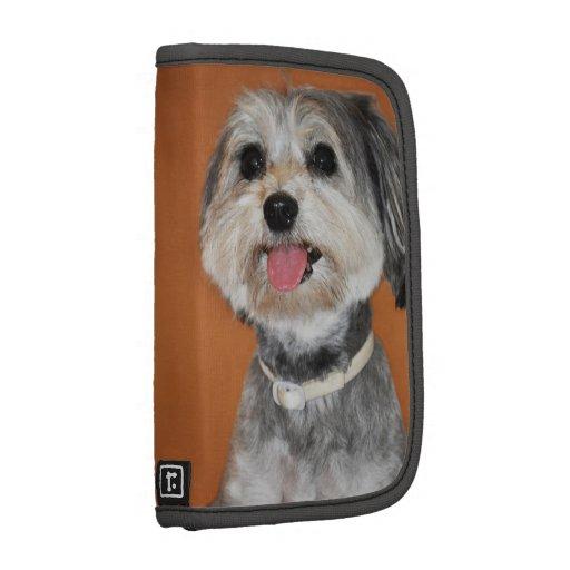 Retrato del perro de Havanese Organizadores