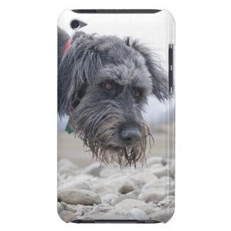 Retrato del perro de la raza de la mezcla, incliná Case-Mate iPod touch fundas