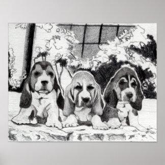 Retrato del perro de perritos de Basset Hound Póster